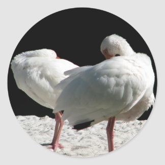 Resting Birds Round Stickers