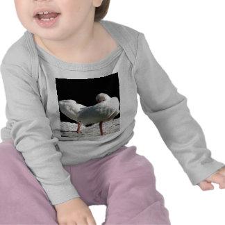 Resting Birds Tshirts