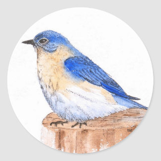 Resting Bluebird Classic Round Sticker