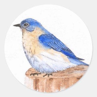Resting Bluebird Sticker