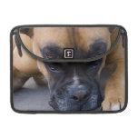 "Resting Boxer Dog 13"" MacBook Sleeve MacBook Pro Sleeve"