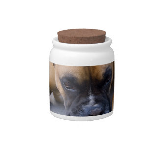 Resting Boxer Dog Candy Jar