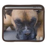Resting Boxer Dog iPad Sleeve