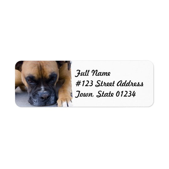Resting Boxer Dog Mailing Label