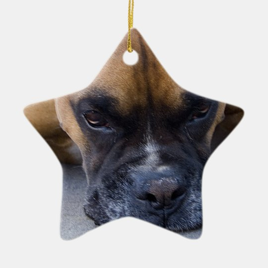 Resting Boxer Dog Ornament