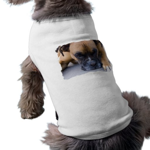 Resting Boxer Dog Pet Shirt