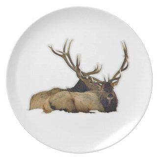 Resting bull elk dinner plate