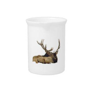 Resting bull elk pitcher