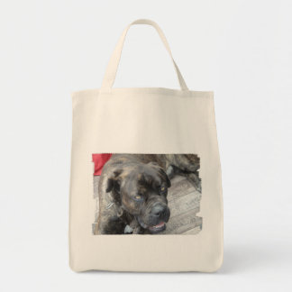 Resting Cane Corso Grocery Tote Bag