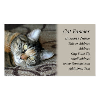 Resting Cat -  Photo Business Card