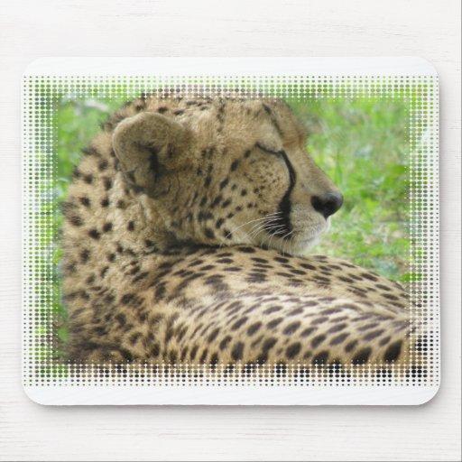 Resting Cheetah Mouse Pad