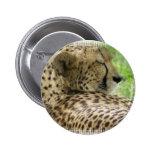 Resting Cheetah Pin