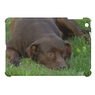 Resting Chocolate Lab Cover For The iPad Mini