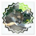"""Resting Cougar Invitation 5.25"""" Square Invitation Card"""