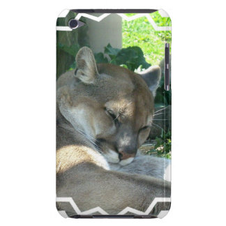 Resting Cougar iTouch Case iPod Touch Cases