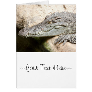 Resting Crocodile Card