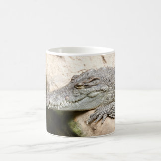 Resting Crocodile Coffee Mug