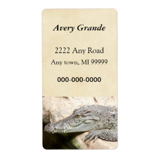 Resting Crocodile Label