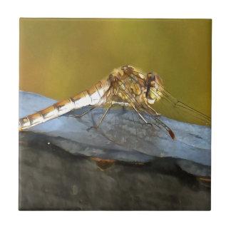 Resting Dragonfly Tile