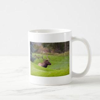 Resting Elk Classic White Coffee Mug