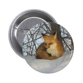 Resting Fox Pin