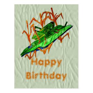 Resting Grasshopper Postcard
