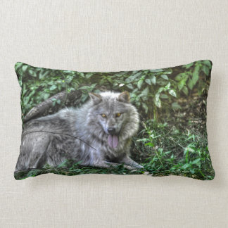 Resting Grey Wolf 3 Wildlife Gift Throw Pillows