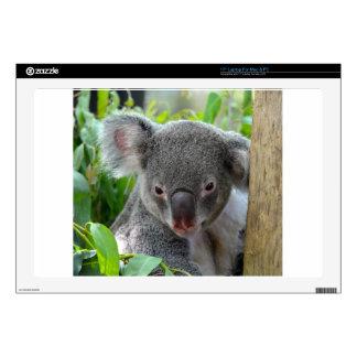Resting, Happy Koala Skins For Laptops