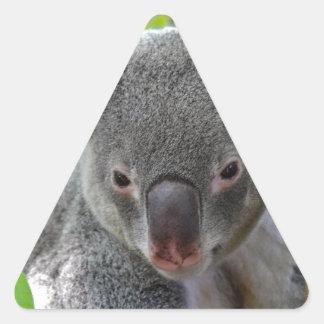 Resting, Happy Koala Triangle Sticker