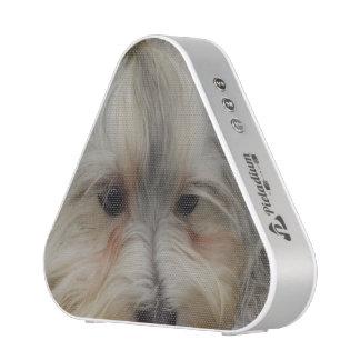 Resting Havanese Dog Bluetooth Speaker