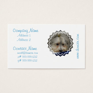 Resting Havanese Dog Business Card
