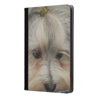 Resting Havanese Dog iPad Air Case