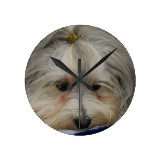 Resting Havanese Dog Round Clock