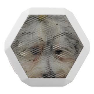 Resting Havanese Dog White Bluetooth Speaker