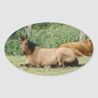 Resting Horse Oval Sticker