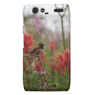 Resting Hummingbird Droid RAZR Case