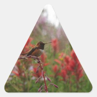 Resting Hummingbird Triangle Sticker