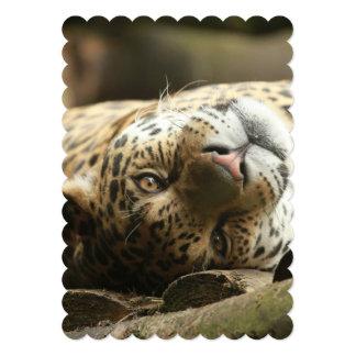 Resting Jaguar Announcement
