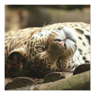 Resting Jaguar Custom Invite