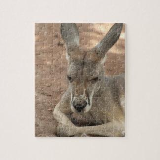 Resting Kangaroo  Puzzle