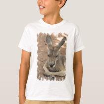 Resting Kangaroo  Youth T-Shirt