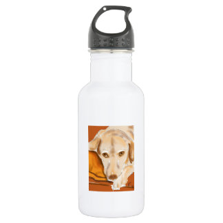 Resting Lab Stainless Steel Water Bottle