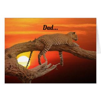 Resting Leopard Dad