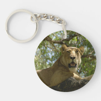 Resting Lioness Double-Sided Round Acrylic Keychain