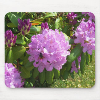 Resting on a Lavender Rhododendron Mouse Pad