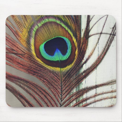 Resting Peacock Feather Mouse Pads