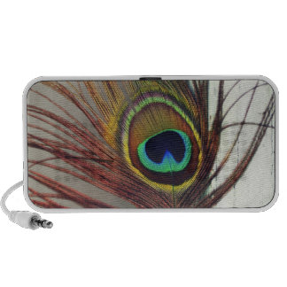 Resting Peacock Feather Notebook Speaker