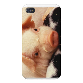 Resting pig case for iPhone 4