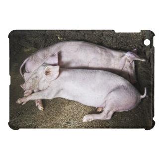 Resting Pigs iPad Mini Cover