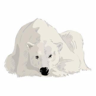resting polar bear photo cut out